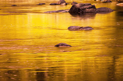 Photograph - Golden Reflections North Fork Flathead River Painted by Rich Franco