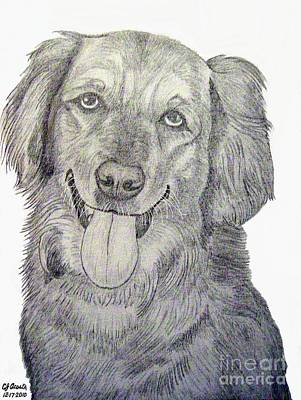 Retriever Digital Art - Golden Retriever A Sketch by Carlos Acosta
