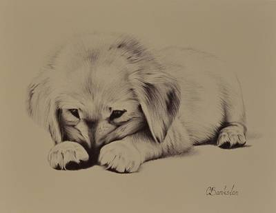 golden retriever drawings fine art america