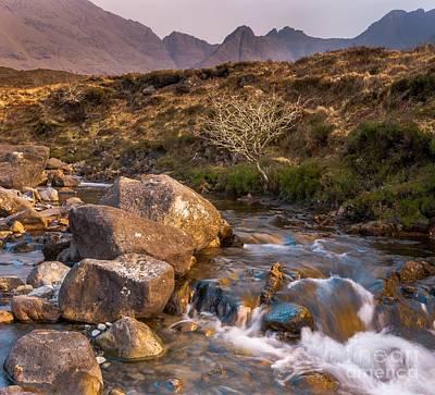 Maciej B. Markiewicz Photograph - Golden River by Maciej Markiewicz