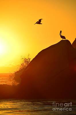 Photograph - Golden Serenity by Debra Thompson