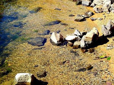 Photograph - Golden Shallow Water Rocks And Snake 3 by Becky Lupe