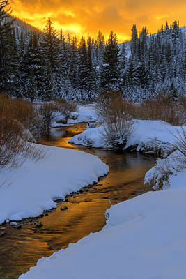 Photograph - Golden Silence by Dustin  LeFevre