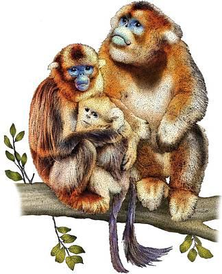 Photograph - Golden Snub Nosed Monkeys by Roger Hall