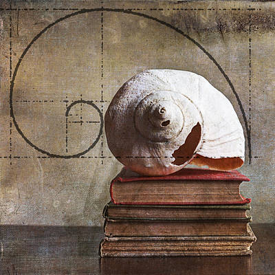 Golden Spirals Art Print by Terry Rowe