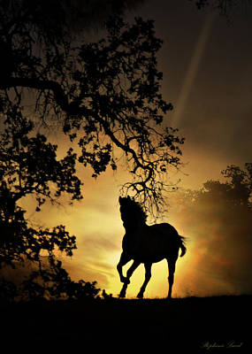 Equine Art Photograph - Golden by Stephanie Laird
