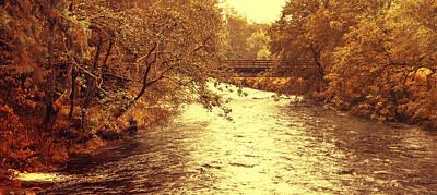 Photograph - Golden Stream by Jenny Rainbow