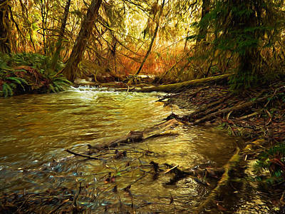 Photograph - Golden Stream by Mary Jo Allen