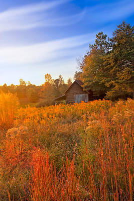 Golden Sunlight On A Fall Morning - North Georgia Art Print by Mark E Tisdale
