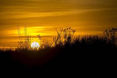 Golden Sunrise Art Print by Andy Smetzer