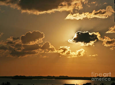 Photograph - Golden Sunrise by Joan McArthur