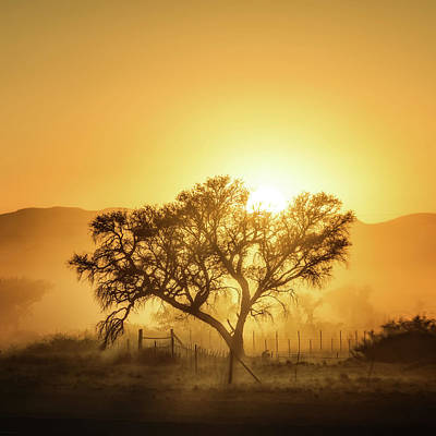 Morning Photograph - Golden Sunrise by Piet Flour