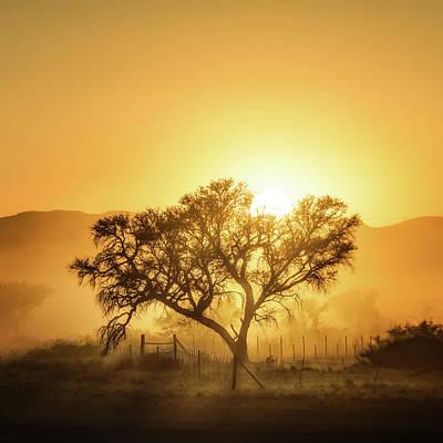 Chance Photograph - Golden Sunrise by Piet Flour