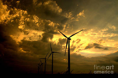 Photograph - Golden Sunset 2 by Jim McCain