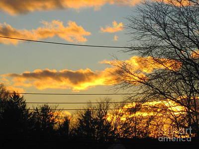 Photograph - Golden Sunset 2 by Tara  Shalton