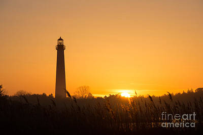 Golden Sunset At Cape May Lighthouse Original