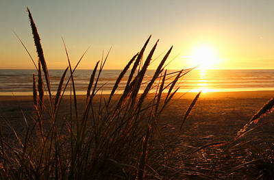 Photograph - Golden Sunset Beach by Athena Mckinzie
