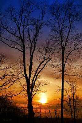Photograph - Golden Sunset by Christina Rollo