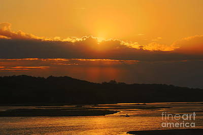 Photograph - Golden Sunset by Elizabeth Winter
