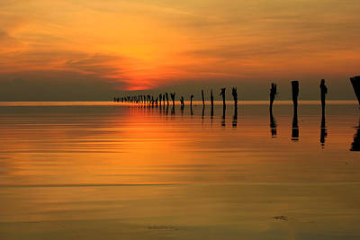 Photograph - Golden Sunset by Johnny Adolphson