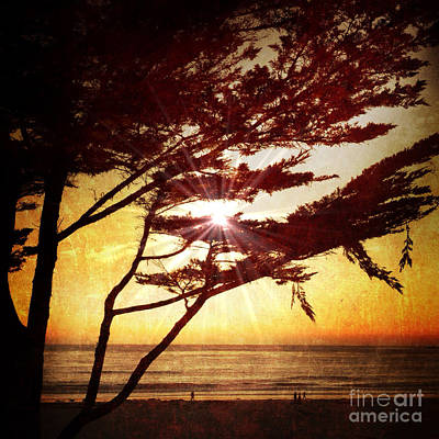Photograph - Golden Sunset On Carmel Beach by Charlene Mitchell