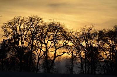 Photograph - Golden Sunset by Ricardo J Ruiz de Porras