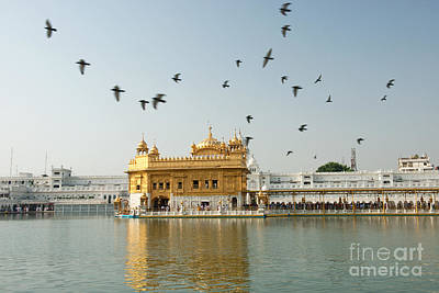 Golden Temple In Amritsar Art Print