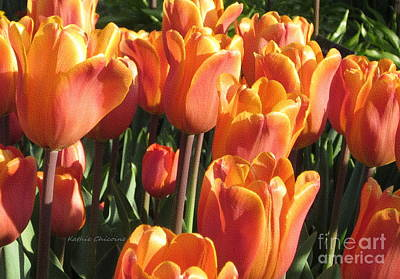 Photograph - Golden Tulips by Kathie Chicoine