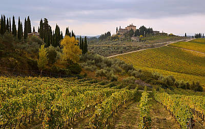Photograph - Golden Tuscany by Joe Bonita