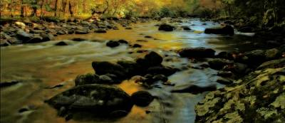 Golden View Of The Little River In Autumn Art Print