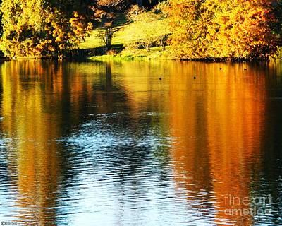 Photograph - Golden Water by Lizi Beard-Ward
