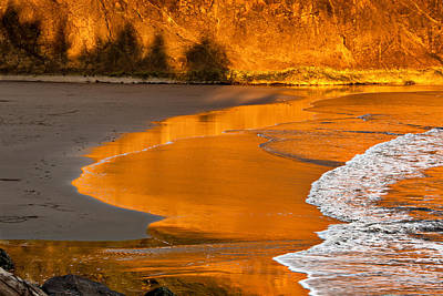 Photograph - Golden Wave by Mary Jo Allen