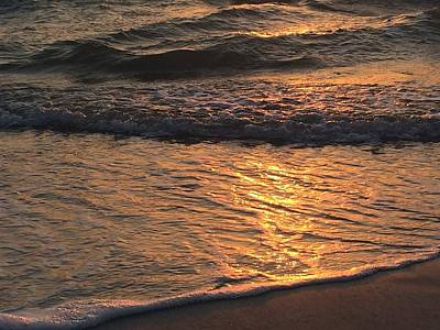 Photograph - Golden Waves by Nicki La Rosa