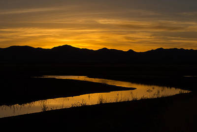 Art Print featuring the photograph Golden Wetland Sunset by Beverly Parks