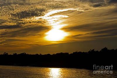 Photograph - Golden Sunset by Sandra Clark