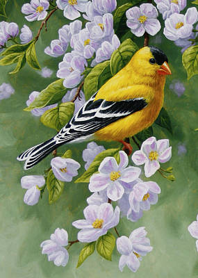 Goldfinch Wall Art - Painting - Goldfinch Blossoms Greeting Card 1 by Crista Forest