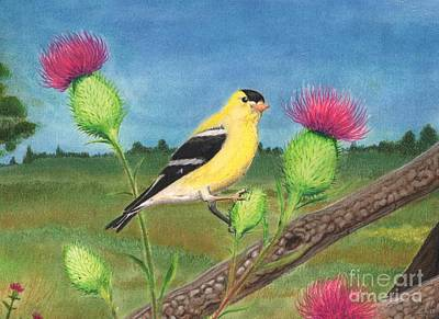 Pastel - Goldfinch by Christian Conner