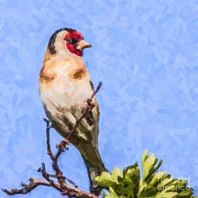 Finch Digital Art - Goldfinch by Liz Leyden
