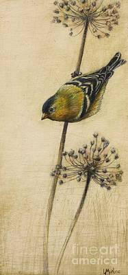 Goldfinch Drawing - Goldfinch by Lori  McNee