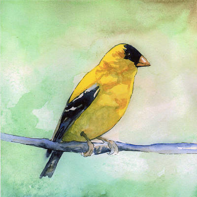 Painting - Goldfinch by Sean Parnell