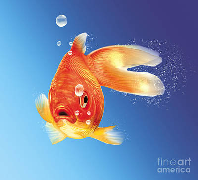 Animals Digital Art - Goldfish With Water Bubbles by Leonello Calvetti