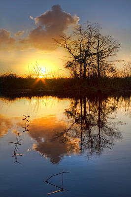 Photograph - Golds On The Glades by Debra and Dave Vanderlaan