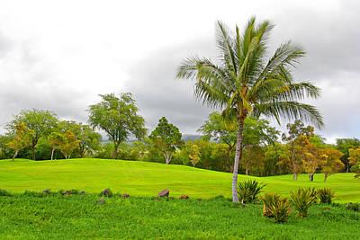 Photograph - Golf Course Greens by John Orsbun