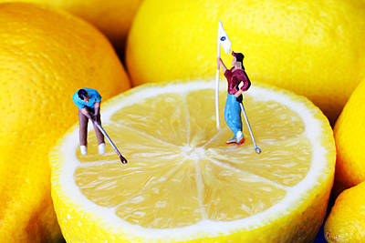 Photograph - Golf Game On Lemons Little People On Food by Paul Ge
