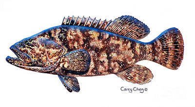 Shark Painting - Goliath Grouper by Carey Chen