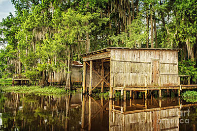 Photograph - Gone Fishing On Caddo Lake by Tamyra Ayles