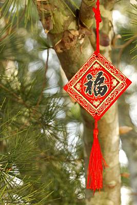 Photograph - Gong Xi Fa Cai - Happy New Year - 1  by Hany J
