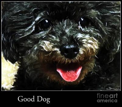 Photograph - Good Dog . Affiche by Renee Trenholm