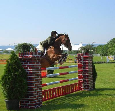 good form at Upperville Art Print