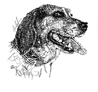 Animals Drawings - Good Girl by Michael Volpicelli